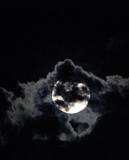 A Seasonal Celebration to the Moon