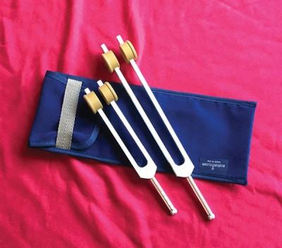 Acutonics Ohm® Octave Set Bored Out Middle & Low Gem Tip Forks