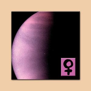 Venus Oil